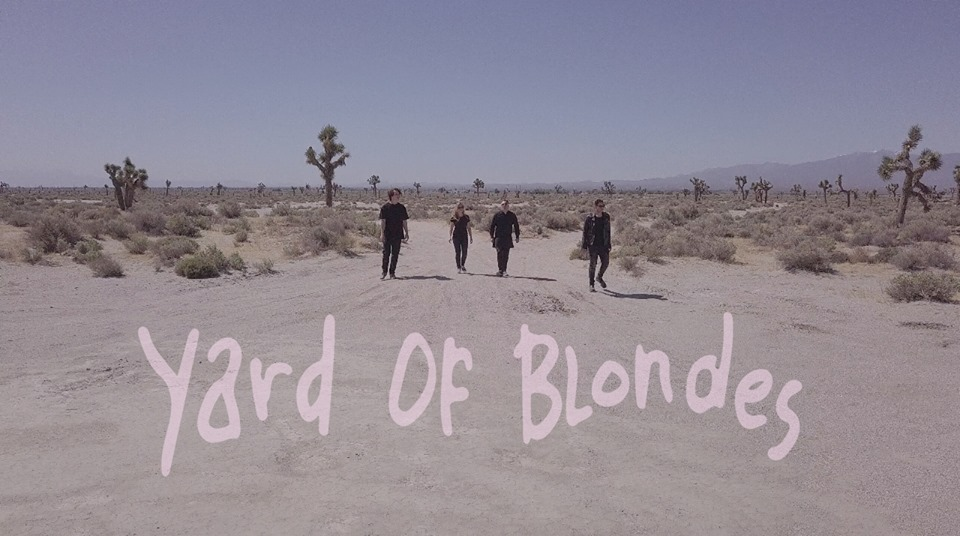 Yard Of Blondes-jpg.com