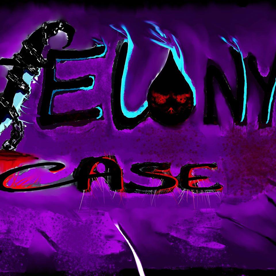 Felony Case-jpg.com