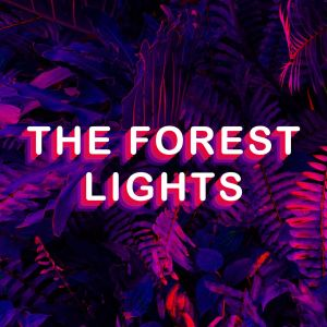 The Forest Lights-jpg.com