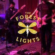 The Forest Lights-jpg.com
