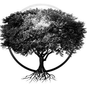 Secret Treehouse-jpg.com